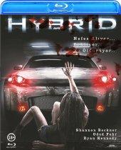 Hybrid Blu Ray