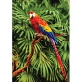 Ks Games Animal Planet 100 Parça Scarlet Macaw Papağan