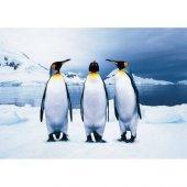 Animal Planet 100 Parça Penguins Penguenler