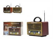 Platoon Pl 4153 Bluetooth Speaker Fm Sd Usb