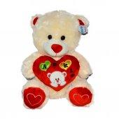 08333 Sun Abc Pff Peluş Ayı Oturan Aşkım Kalp Yastık