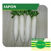 Fide Sepeti Japon Turp Tohumu 10grlık 1 Paket