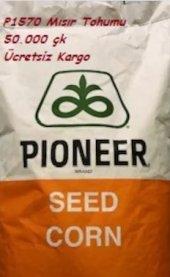 Pioneer P1570 Mısır Tohumu 50.000 Çk...