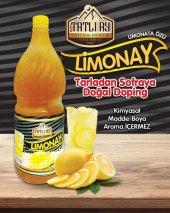 Ev Yapımı Limonata Özü 2 Kg (12 Lt) Katkısız...