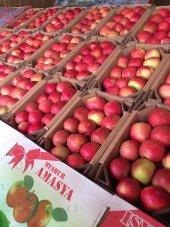 Amasya Elması (4 Kg) Amasya Posta Pazarı