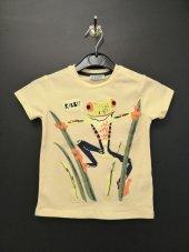 Sarı Renkli Kurbağa Desenli Bebek T Shırt Kod 327
