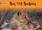 Big Cat Babies (Big Cat 5 Green)