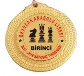 Madalya Satranç Turnuvası 1.si