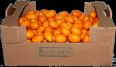 Sertifikalı Organik Kamkat 2kg Karton