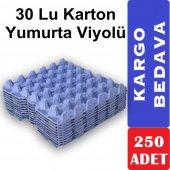 30'lu Karton Yumurta Viyolü 250 Adet (Viyol, Kolisi, Kabı, Kartonu)
