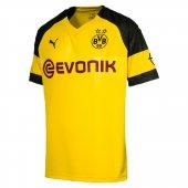 Puma Bvb Borussia Dortmund Erkek Futbol Forması...
