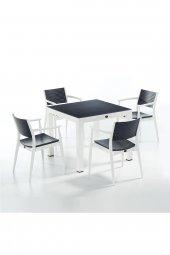 Novussi Seginus Bahçe Seti 4 Sandalye + 1 Camlı Masa Takımı