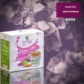 Wess Elma Lifli Sebze Çorbası 15g X 20 Paket