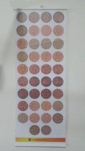 Renk Körlüğü Test Skalası Vinleks Malzeme Tüm...