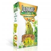 Jungle Muhabbet Kuşlari Için Balli&meyveli Kraker 10lu
