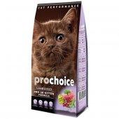 Pro Choice Pro 38 Cat Kitten Plus Yavru Kedi...