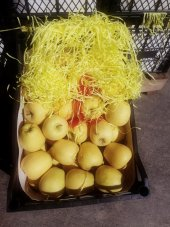 Golden Elma Yaka Gelendost Isparta (20kg)