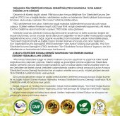 Yeşilmarka Kuru ve ince Saçar için 11 Bitki özlü Doğal Şampuan-7