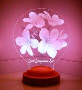 3d Led Lamba 3 Boyutlu Plumeria Çiçek Kişiye...