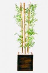 Cube Bambu Küp Saksı