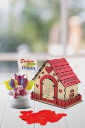 Angemiel Ölümsüz Çiçek Renk Zeplin Aşk Evi Aşk...