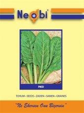 Neobi Pazı Tohumu