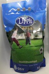 Dsv Lippa 6 Mix Çim Tohumu 1kg