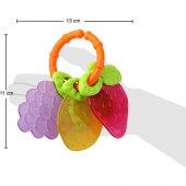 30302 Babyzz Renkli Meyve Dişlik Kanz
