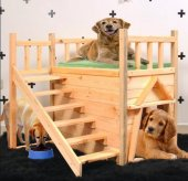 Kedi Kulubesi Kedi Çiti Montessori Merdivenli...