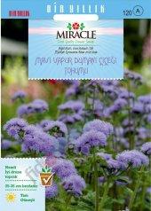 Ageratum Mexicanum Mavi Vapur Dumanı Çiçeği Tohumu (1000 Tohum)