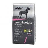 Golosi Lamb Rice Kuzu Etli Yetişkin Köpek...