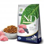 N&d Tahılsız Medium Kuzu Ve Yaban Mersinli Köpek Maması 2,5 Kg