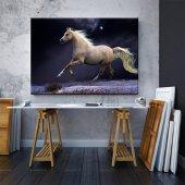 Siyah-Beyaz At Tablosu 70 cm x 100 cm