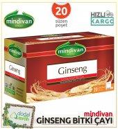 Mindivan Ginseng Karışık Bitki Çayı