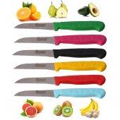 6lı Meyve Bıçağı Seti (6 Renk Seçeneği)