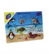 Playwood Deniz Hayvanlari Ahsap Tutmali Egitici Puzzle