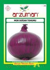 Arzuman Mor Soğan Tohumu 5 Gr 2000 Adet