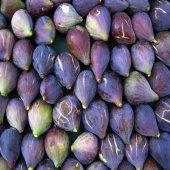 Karadeniz Patlıcan İnciri Torbalı +40 Cm