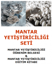 İSTİRİDYE MANTARI VE KÜLTÜR MANTARI YETİŞTİRİCİLİĞİ ÖĞRENİM BELGESİ VE EĞİTİM KİTABI (Türkiye'de Bir İlk - Bu Fırsatı Kaçırmayınız)