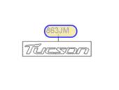 TUCSON  AMBLEM -