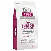 Brit Care Junior Large Kuzu Etli Büyük Irk...