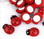 Uğur Böceği Ahşap 50 Li Paket Büyük Boy 2 Cm Kırmızı
