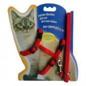 Kedi Göğüs Bel Tasma Takımı Medium Kırmızı