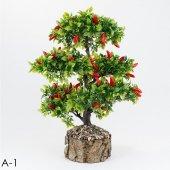 Kütük Saksıda Meyve Ağaçları