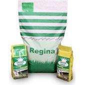 Regina 7 M Karışım İthal Çim Tohumu 10 Kg