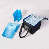 Buz Aküsü -18 Derece Özel Ürün (26x16x4)cm 2 Adet-3