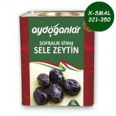 Siyah Yağlı Salamura Zeytin 10kg X Small 321 350