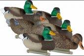 Lucky Duck Deception Series Yeşilbaş Ördek Mühre T...