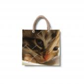 Dijital Baskılı Kedi Desenli Plaj Çantası Çnt01