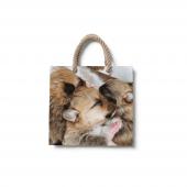 Dijital Baskılı Kedi Yavrusu Desenli Plaj Çantası Çnt04